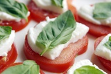 Tomato  Mozzarella And Basil Salad