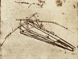 Leonardo's Ornithopter