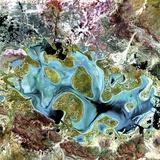 Lake Carnegie  Australia