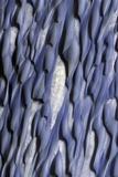 Martian Sand Dunes  Satellite Image