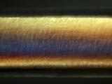 Hair Shaft  Light Micrograph