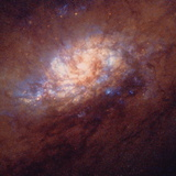HST Image of Star Birth In Galaxy NGC 1808