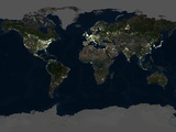 Whole Earth At Night  Satellite Image
