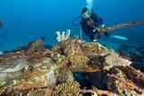 Diver Exploring a Plane Wreck