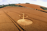 Crop Formation  Cheesefoot  Hampshire