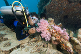 Diver Exploring a Wreck