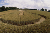 Crop Formation  Lockeridge  Wiltshire