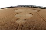 Crop Formation In Form of Mandelbrot Set