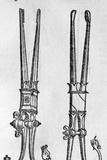 16th Century Forceps