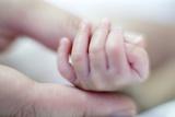 Premature Baby's Hand