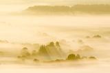 Morning Mist Over Farmland