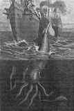 Gigantic Squid And Ship  19th Century