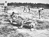 Burial Party on the Battlefield of Cold Harbor  1865