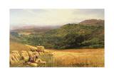 Harvest Time  1860