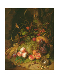 Still Life of Fruit with a Bird's Nest and Insects  1710