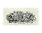 Runaway Cart from 'Land Birds  C 1797