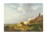 Sheep and Chickens in a Landscape  19th Century