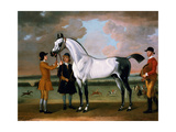 The Duke of Bolton's 'starling' with a Jockey and Groom at Newmarket  1734