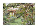 The Rose Pergola  Blackhurst House  Tunbridge Wells  Kent