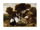 Two Rabbits in a Landscape  C1650
