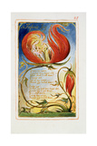Infant Joy: Plate 25 from Songs of Innocence and of Experience C1815-26