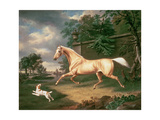 A Palomino Frightened by an Oncoming Storm with a Spaniel  1814