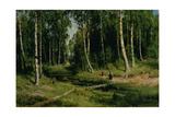 In the Birch Tree Forest  1883