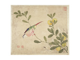 One of a Series of Paintings of Birds and Fruit  Late 19th Century