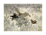 Hawk and Black Game  1884