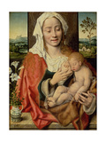 Madonna and Child  C1525-30