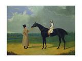 Jerry  Winner of the St Leger 1824