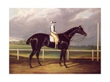 Jerry  Winner of the St Leger in 1824