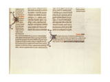 Bottom of a Page Without a Miniature  from 'The Bible of Jean De Sy'  C1355