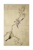 P332-1946 Vol1 F2 Tit on a Bough on the Right and a Bush-Warbler on a Branch on the Left  from…