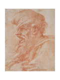 Head of a Bearded Man Shouting  C1525