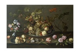 Still Life of Fruit  Flowers and Shells