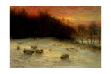 Sheep in a Winter Landscape  Evening
