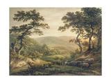 Needlewood Forest  Hampshire