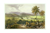 Retirement Estate  St James's  Plate 13 from 'West Indian Scenery: Illustrations of Jamaica' …