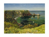 Anstey's Cove  Devon  1854