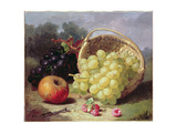 Still Life with Fruit  1873