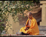 Monk at Prayer at Bodhi Temple
