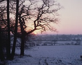 Winter Scene in the Snow  Hockley  Essex