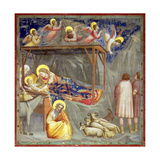 The Nativity  C1305