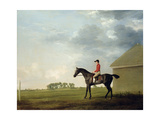 Gimcrack with John Pratt Up on Newmarket Heath  1765