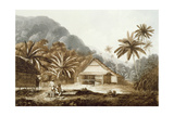View in the Island of Cracatoa  from 'Views in the South Seas'  Pub 1789