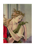 Angel  Detail from the Nativity  or Tancredi Altarpiece  in Collaboration with Bernardino Fungai…