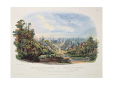 Forest Scene on the Tobihanna  Alleghany Mountains  Plate 4 from Volume 1 of 'travels in the…