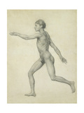 The Entire Human Figure from the Left  Lateral View  from the Series 'A Comparative Anatomical…