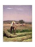 A Peasant  Mowing